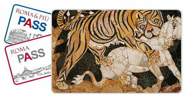 Róma kártya, Roma Pass